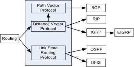 Interior Routing Protocols