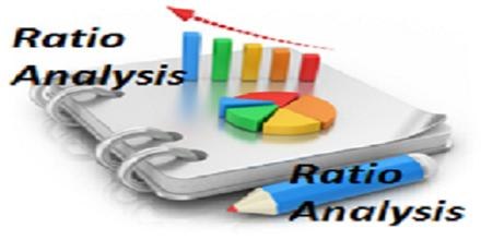 Term paper on financial ratio analysis