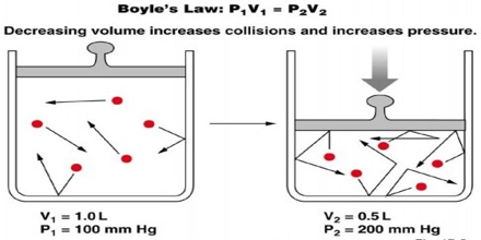 Boyle S Law Assignment Point
