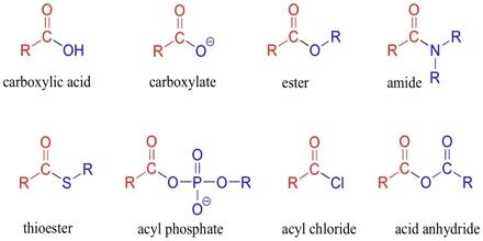 Carboxylic Acids
