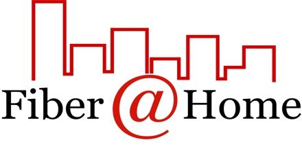 Internship Experience at Fiber @ Home Limited