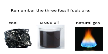 Fossil Fuel and Crude Oil