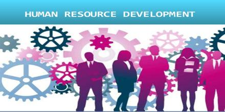 Effectiveness of Human Resource Management in Improving Performance