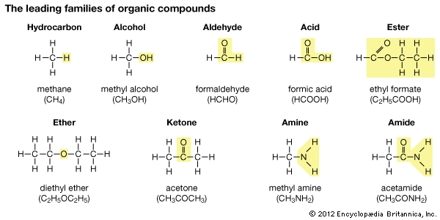 Organic Compounds of Life
