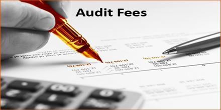 Critical Analysis on Determining Audit Fees by an Audit Firm