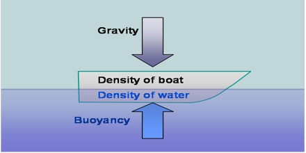 Buoyancy Assignment Point