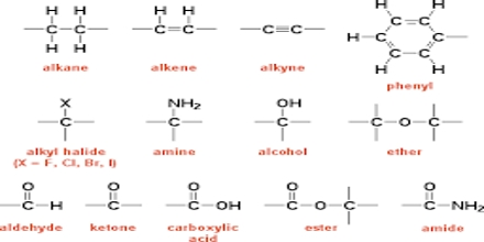 functional groups assignment point