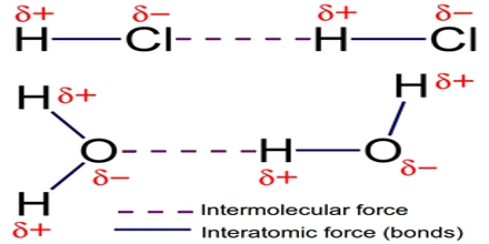 ib chemistry intermolecular bonding essay International baccalaureate chemistry web, an interactive ib syllabus with revision notes and worked past paper questions.