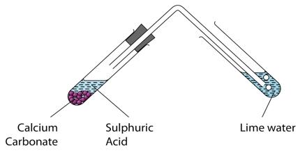 Metals and Acids