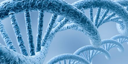 Lecture on Genetics