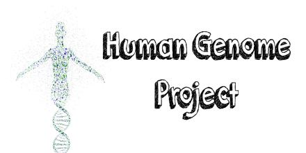 an analysis of the human genome project in international genetic research project The human genome project essay the human the mapping of the human genome on society human genetics has the human genome project is a international.