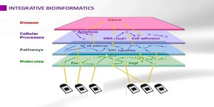 Integrative Bioinformatics