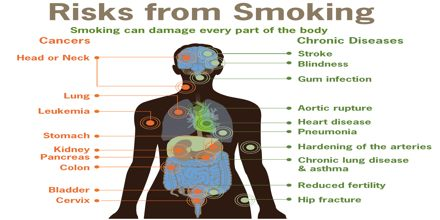 Tobacco and its Dangers