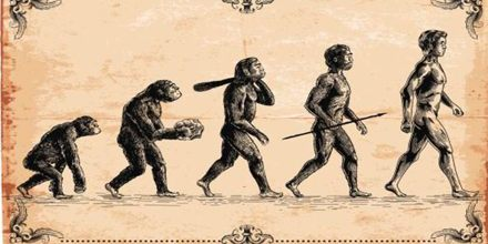 Evolution and Darwin