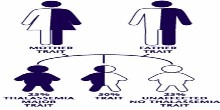 Genetics and Inheritance