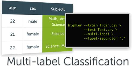 Multi-Label Classification