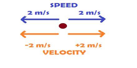 Speed and Velocity