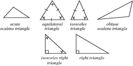 Triangles: Classifications, Angles and More