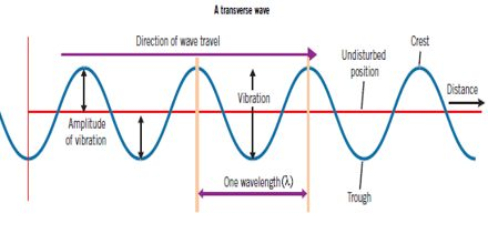 Lecture on Waves