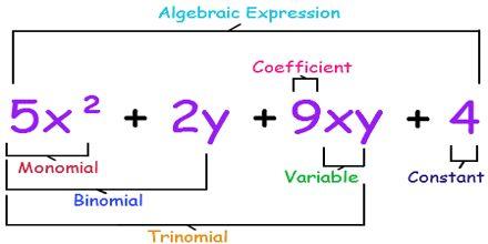 Algebraic Expression