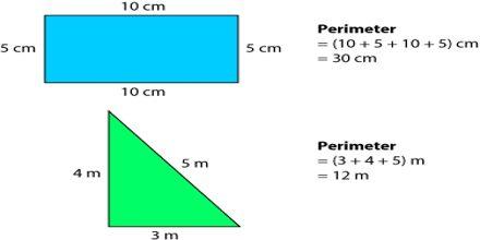 Length and Perimeter