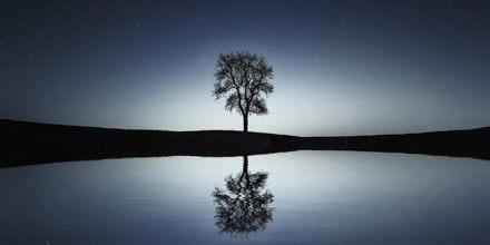 Presentation on Reflections