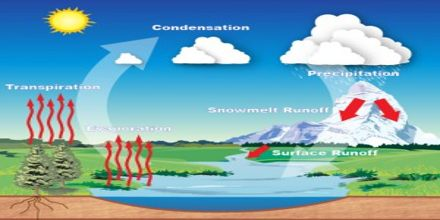 Influence of Human Activity on the Environment