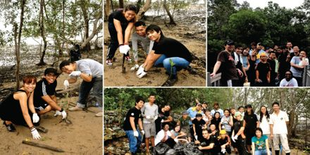 Reforestation in Sungei Buloh (Singapore)