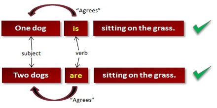 Grammar Rules: Subject or Verb Agreement