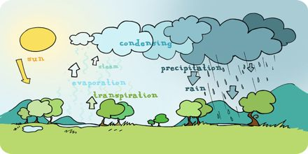 What is Condensed Water Vapor?