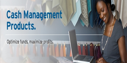 Cash Management Systems of Citigroup