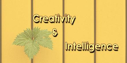 Creativity and Intelligence