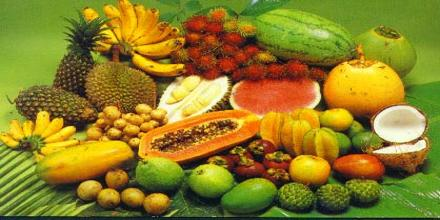 Tropical Fruits of Philippines
