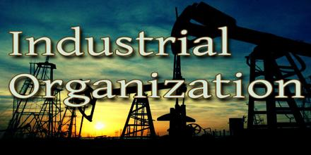 Industrial Organization Assignment Point