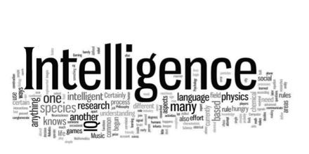 About Intelligence