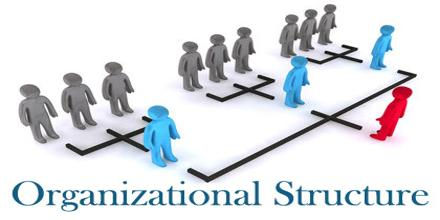 About Organizational Structure