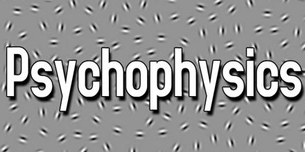 Psychophysics research paper