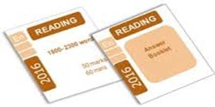 SATs Exam: Reading Paper