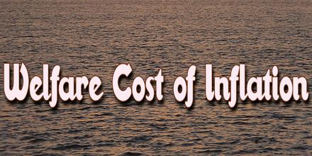 Welfare Cost of Inflation