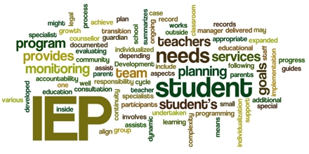 Considerations in Developing the Individualized Education Plan