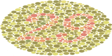 Lecture on Color Blindness