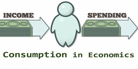 consumption in economics assignment point