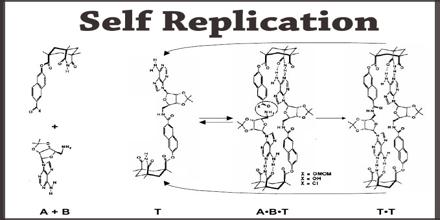 Self Replication