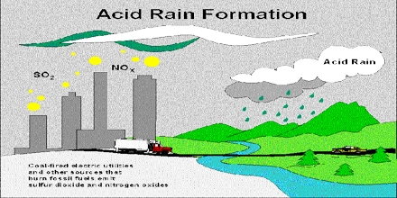 Acid rain research paper