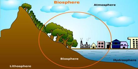 Lecture on the Biosphere