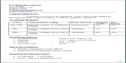 Curriculum Vita format for Electrical and Computer Engineering