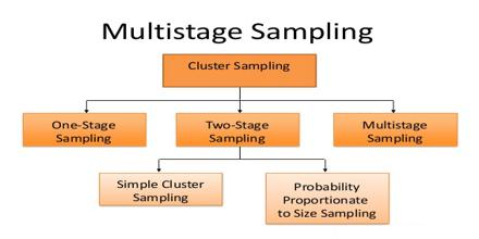 Multistage Sampling Assignment Point