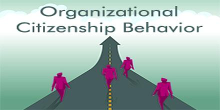an essay on organizational citizenship behavior