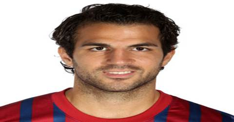 Biography of Cesc Fàbregas
