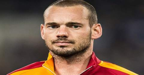 Biography of Wesley Sneijder